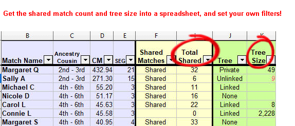 Sample spreadsheet with filters on total shared matches and tree size
