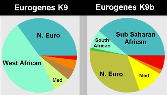 side by side charts for eurogenes k9 and k9b showing different categories