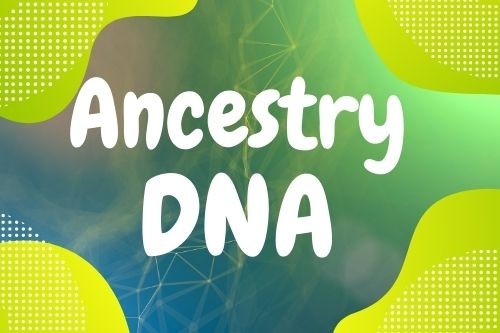 ancestry dna category link