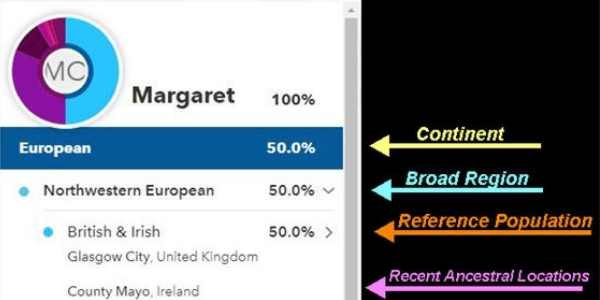 breakdown of european origins with second category of british and irish, next category is city level