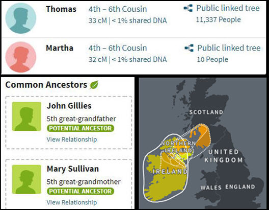 sections from display results including dna matches, ethnicity results, and potential ancestors